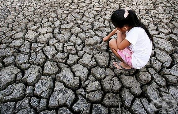 Ел Ниньо оказва влияние на разпространението на холера в Африка - изображение