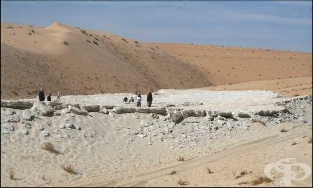 Древни човешки следи в Саудитска Арабия документират промяната на климата - от зелен рай до пустиня - изображение