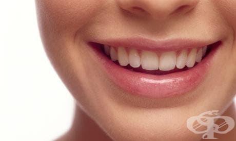 """""""Изяждат"""" ли извадените зъби паметта ни? - изображение"""