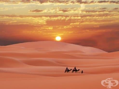 Пустинята Сахара се е увеличила с над 700 хиляди кв. км. - изображение
