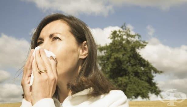 Кихането, причинено от слънцето, е заложено генетично - изображение