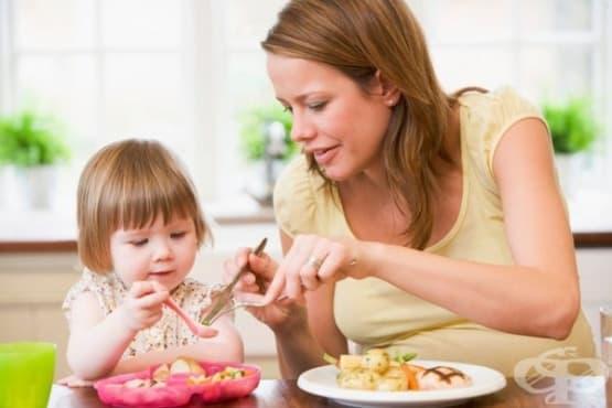 Колко храна трябва да се дава на децата от 1 до 4-годишна възраст - изображение