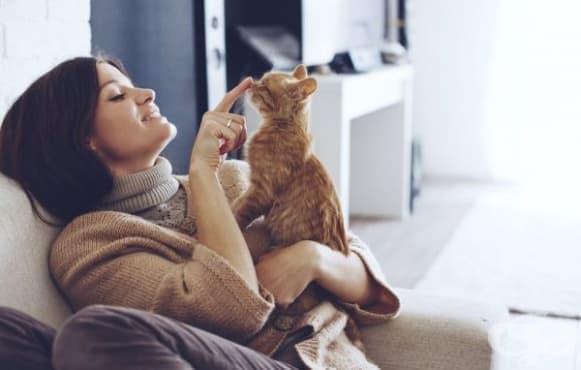Причината за тежък предменструален синдром може да бъде домашната котка - изображение