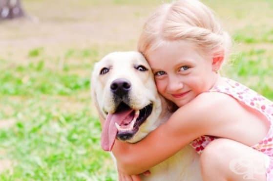 Детето страда по-малко от тревожност при наличието на домашен любимец - изображение