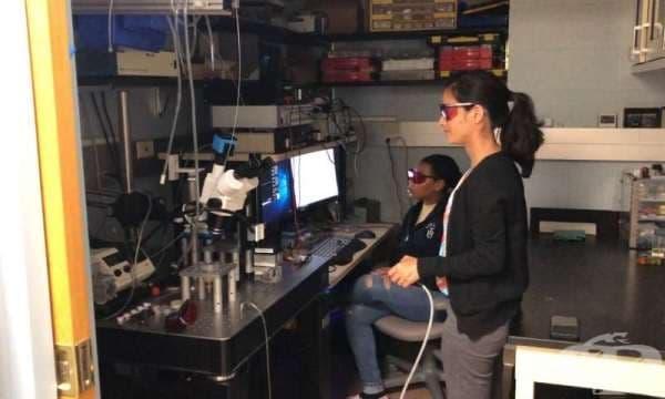 Американски учени разработиха метод за определяне на качеството на питейната вода - изображение