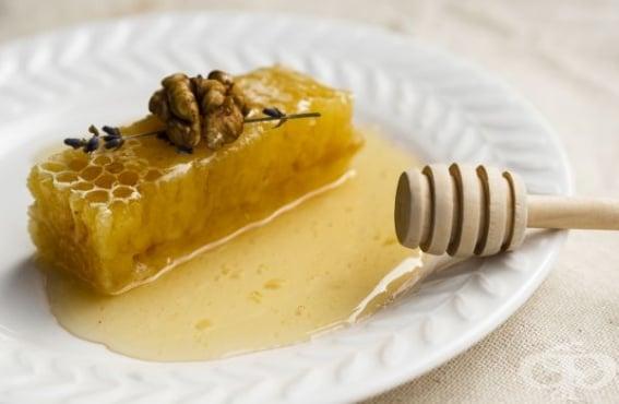 Еликсир от мед и орехи – народната рецепта - изображение