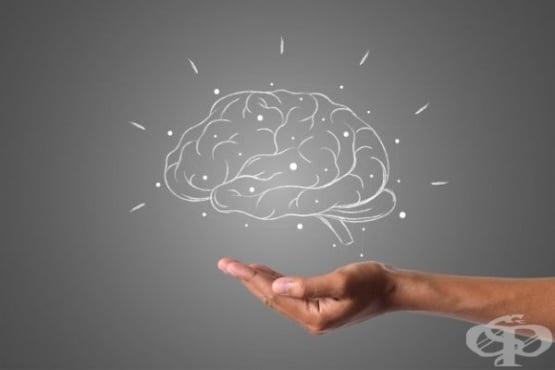 Измерване на мозъчен кръвоток и биоелектрична активност със светлина - изображение