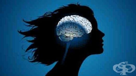 Жените започват да губят остротата на ума си още през 50-те години - изображение