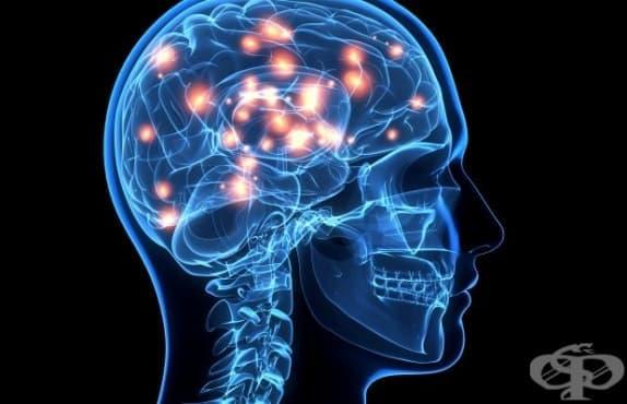 Мозъкът променя свои участъци, когато човек е със счупена ръка - изображение