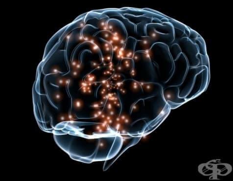 Физическата сила показва колко здрави са мозъците ни - изображение