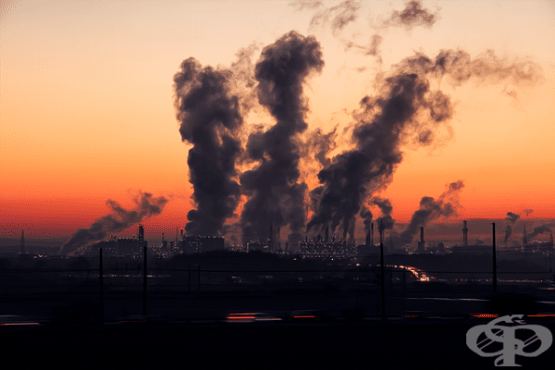 Мръсният въздух – сериозна предпоставка за бъбречни заболявания  - изображение