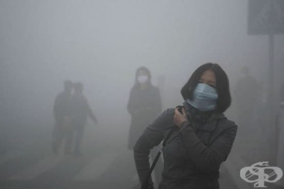 Мръсният въздух намалява умствените способности на хората - изображение
