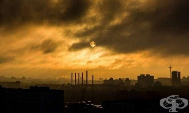 Според датски учени високите нива на замърсяване на въздуха увеличават риска от шизофрения - изображение