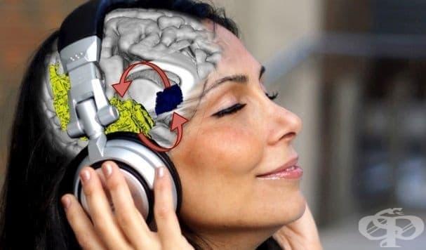 Човек може да се пристрасти към музиката както към наркотиците и алкохола  - изображение
