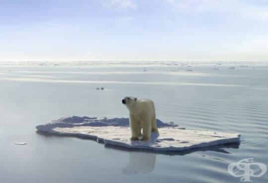 Най-топлият период за Световния океан е била отминалата 2017-а - изображение