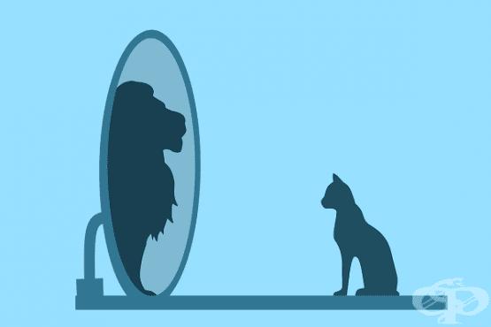 Нарцисизъм и когнитивен дисонанс – причините да не можем да приемем загубата  - изображение