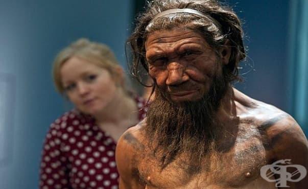 Някои алергии сме ги наследили от неандерталците - изображение