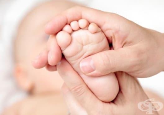 Сканирането на мозъка след раждане може да определи риска от нарушения в развитието при недоносени деца - изображение