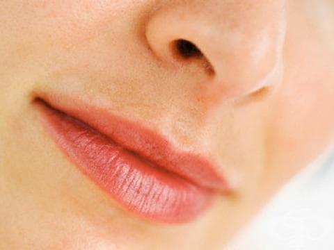 Една трета от хората са с изкривена носна преграда - какво представлява реконструктивната риносептопластика и кога се налага да бъде извършена? - изображение