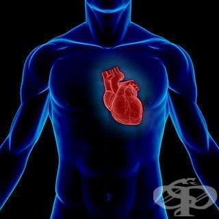 Защо получавам сърцебиене нощем? - изображение