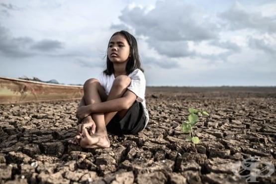 Ново изследване: климатичните промени ще удвоят броя на засегнатите от екстремна суша - изображение