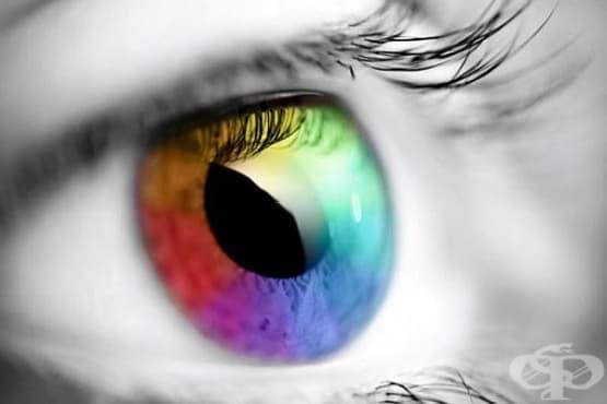 Специални очила ще позволяват виждането на невидимите цветове - изображение
