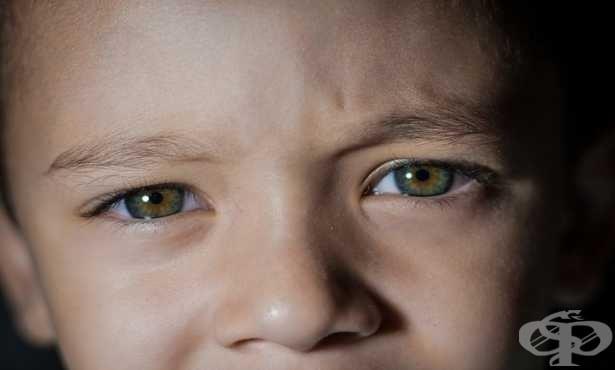Офталмолози сигнализират - пазете детското зрение при дистанционно обучение - изображение