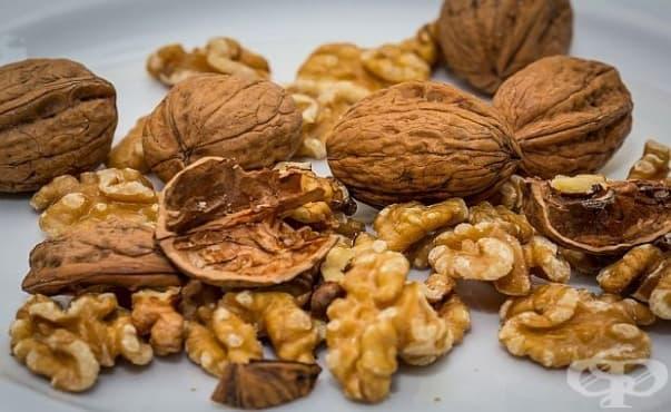 Орехите увеличават популацията на добрите бактерии в червата - изображение