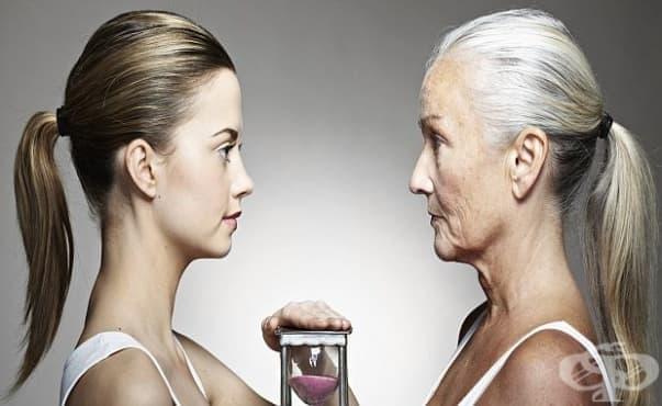 Изчислиха на каква възраст физиологично започваме да стареем - изображение