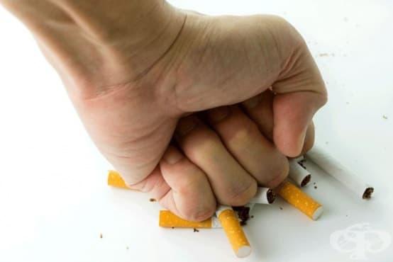 Отказът от тютюнопушене може да доведе до положителни промени в чревния микробиом - изображение