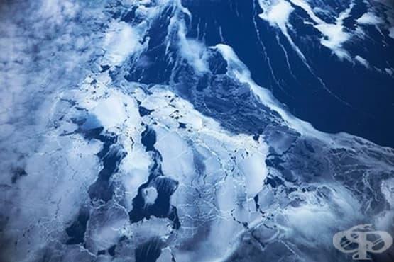 Намериха извънземни микроорганизми в Антарктида - изображение