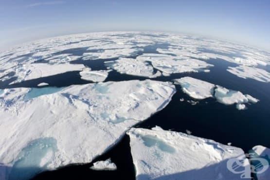 Човекът е отговорен за отстъплението на 60% от ледовете на Северния ледовит океан - изображение