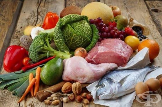 Според австралийски учени палео диетата увеличава риска от сърдечни заболявания - изображение
