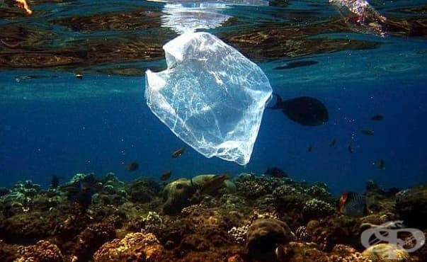 Опасността Средиземно море да се превърне в море на пластмасата е реална - изображение