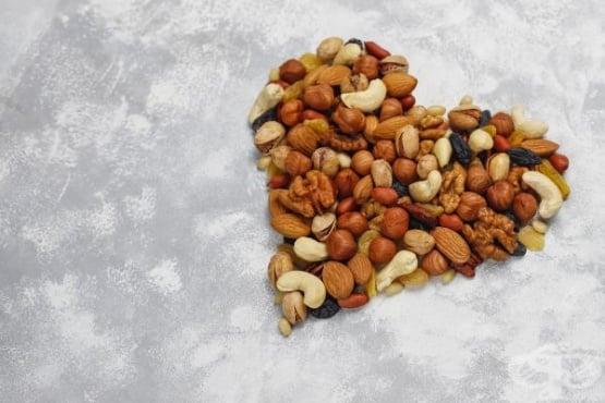 Кои ядки са най-полезни за здравето - изображение
