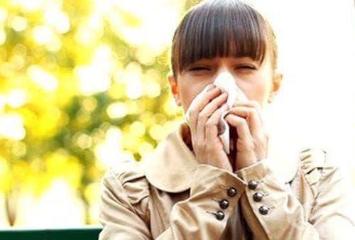 Проф. Мермерски: Клеевата тинктура ще ви избави от хремата и вирусите - изображение