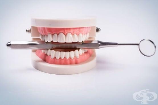 Прополисът поддържа здравето на устната кухина и зъбите - изображение