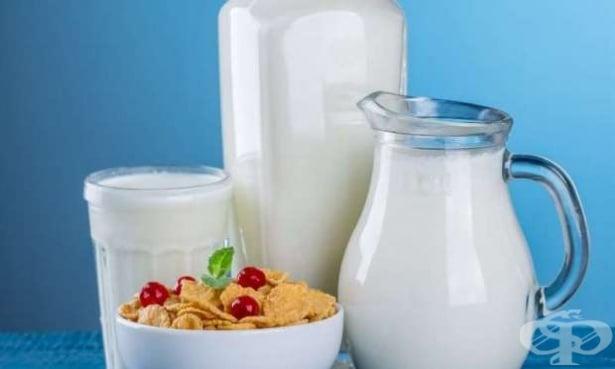 Проучване разкрива, че децата, които консумират пълномаслено мляко, са с по-малък риск от затлъстяване - изображение