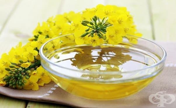 Честата употреба на масло от рапица може да влоши паметта - изображение