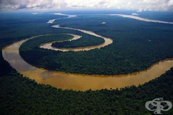 Водите на река Нил са силно замърсени - изображение
