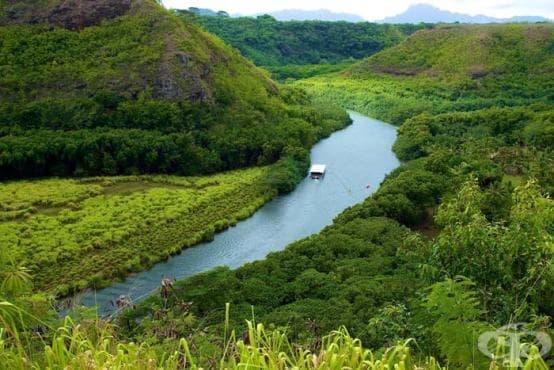 Ново откритие на учени: И реките дишат - изображение