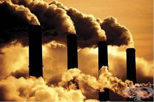 Рекордно високите нива на въглеродни емисии трябва да се намалят в най-кратък срок - изображение