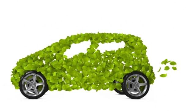 Полски изследователи разработват проект за производството на автомобилни части от плевели - изображение