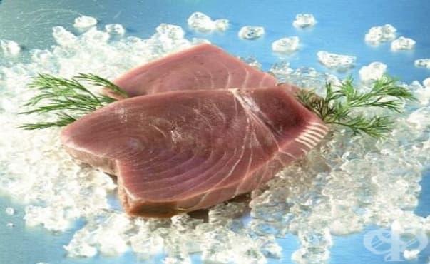 Някои видове риба могат да навредят на здравето ни - изображение