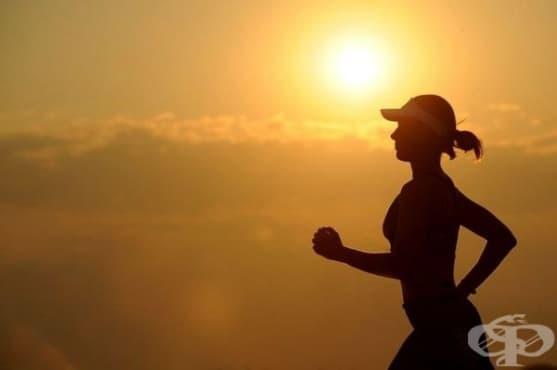 Джогингът и пет други упражнения предотвратяват наддаването на тегло - изображение