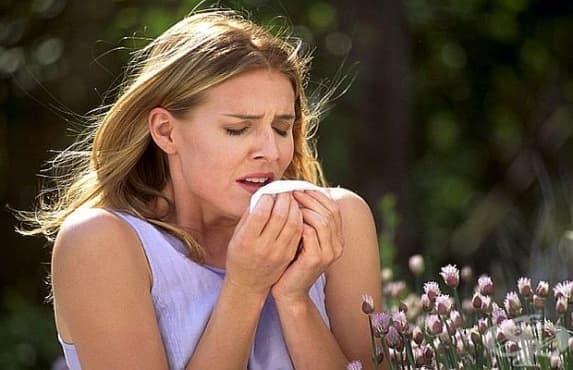 Лещи за нос спасяват от сенна хрема - изображение