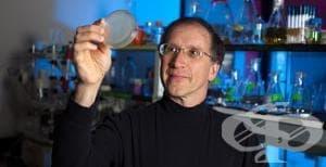 Американски учени създадоха синтетични протеини, които могат да поддържат живота - изображение