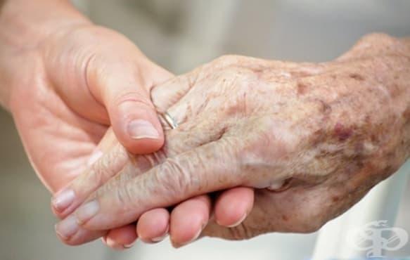 Американски биолози откриха главния фактор за стареенето на клетките - изображение