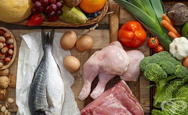 С какво да се храним, за да се радваме на здрави стави? - изображение