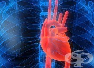 Сърцето на момче, чакащо за трансплантация, се самоизлекува - изображение